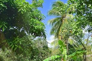 villa4-nook-gardens-l