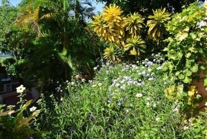 flowergardensbyvilla7